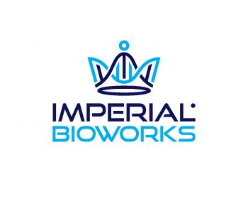 imperial - technology logo design - icreativesol